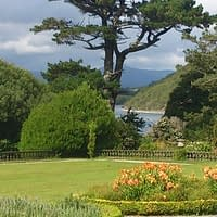 View from Bantry House