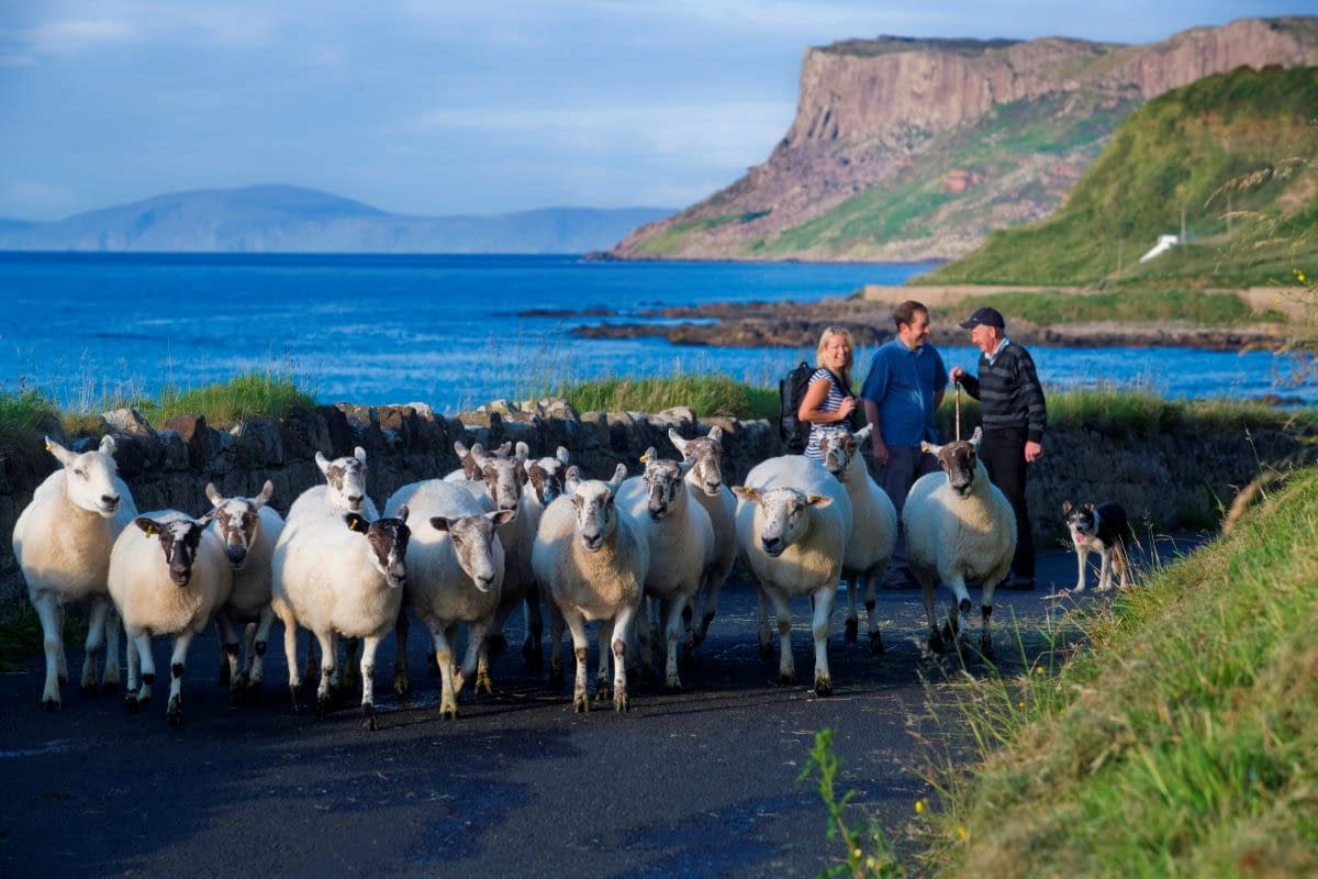 Discover Ireland, meet the locals, travel off the beaten path